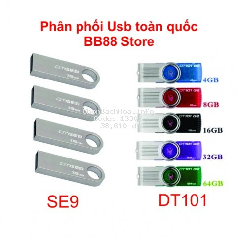 Usb Tốc độ nhanh 2-4-8-16-32-64 Gb Móc khóa Dtse9 Dt101 Chống sốc chống nước chống nhiệt